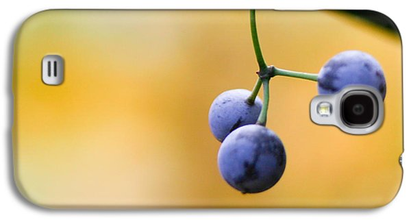 Berries Galaxy S4 Cases - Hanging Berries Galaxy S4 Case by Shane Holsclaw
