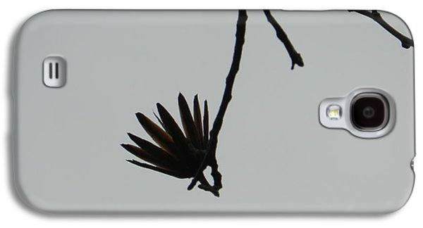 Original Photographs Galaxy S4 Cases - Hanging out Galaxy S4 Case by Nicholas Novello