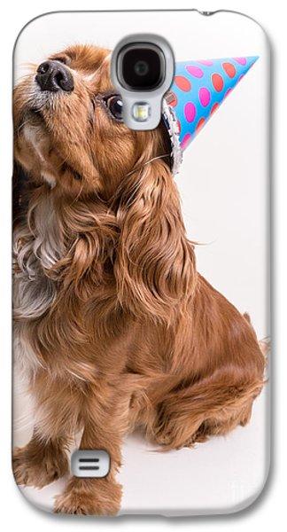 Canine Galaxy S4 Cases - Happy Birthday Dog Galaxy S4 Case by Edward Fielding