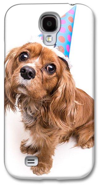 Toy Dog Galaxy S4 Cases - Happy Birthday Puppy Galaxy S4 Case by Edward Fielding