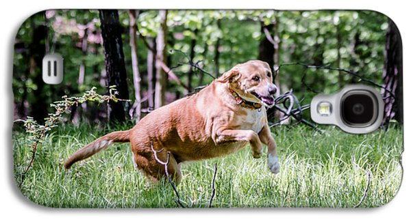 Dog Running. Galaxy S4 Cases - Happy Dog Galaxy S4 Case by Jim DeLillo