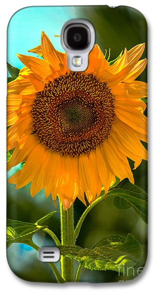 Haybale Galaxy S4 Cases - Happy Sunflower Galaxy S4 Case by Robert Bales