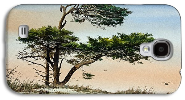 Windblown Paintings Galaxy S4 Cases - Harmony of Nature Galaxy S4 Case by James Williamson