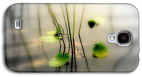 Abstract Nature Galaxy S4 Cases - Harmony ZEN Photography II Galaxy S4 Case by Susanne Van Hulst