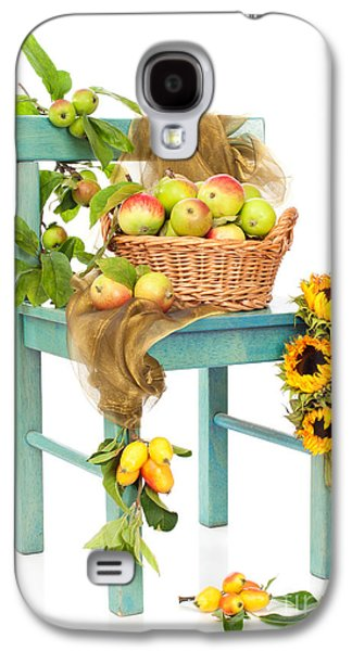 Wild Orchards Galaxy S4 Cases - Harvest Fayre Galaxy S4 Case by Amanda And Christopher Elwell