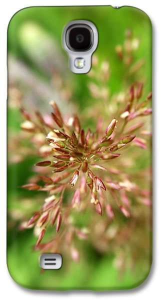 Abstract Nature Galaxy S4 Cases - Harvest Grass Galaxy S4 Case by Christina Rollo
