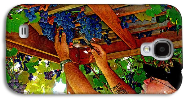 Concord Grapes Galaxy S4 Cases - Harvesting Galaxy S4 Case by John Langdon