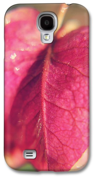 Abstract Nature Photographs Galaxy S4 Cases - Have a Heart Galaxy S4 Case by Laurie Search