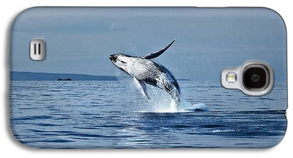 Rare Moments Galaxy S4 Cases - Hawaii Whale Breach Galaxy S4 Case by Pasha Reshikov