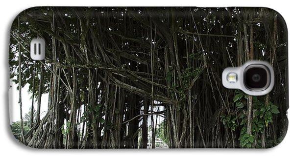 Tree Roots Galaxy S4 Cases - Hawaiian Banyan Tree - Hilo City Galaxy S4 Case by Daniel Hagerman