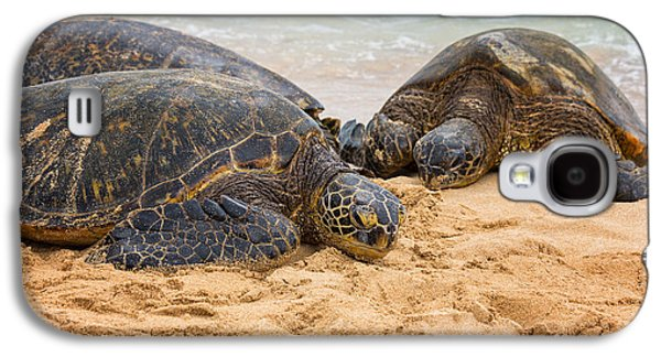 Pictures Photographs Galaxy S4 Cases - Hawaiian Green Sea Turtles 1 - Oahu Hawaii Galaxy S4 Case by Brian Harig