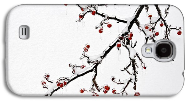 Indiana Winters Galaxy S4 Cases - Hawthorn Ice and Snow - D004830 Galaxy S4 Case by Daniel Dempster