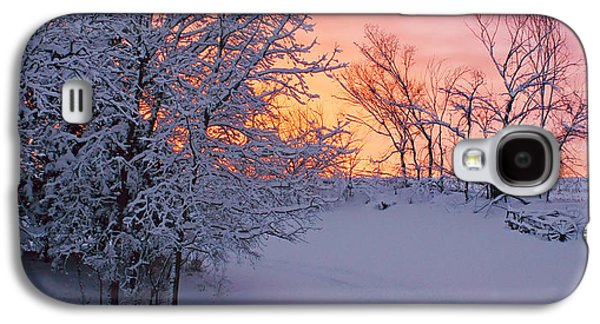 Unused Galaxy S4 Cases - Hayrake and Trees - Winter Sunset #2 Galaxy S4 Case by Nikolyn McDonald