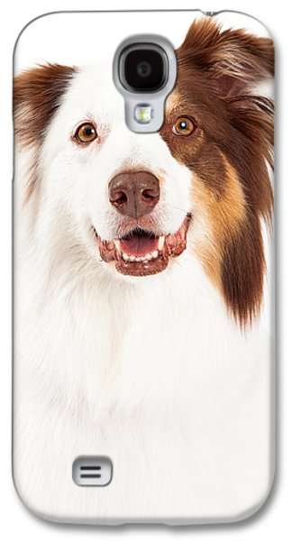 Headshot Galaxy S4 Cases - Head Shot of Beautiful Border Collie Galaxy S4 Case by Susan  Schmitz