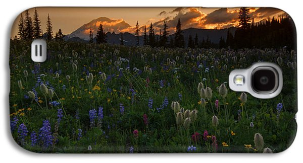 Sunbeams Galaxy S4 Cases - Heavenly Garden Galaxy S4 Case by Mike  Dawson