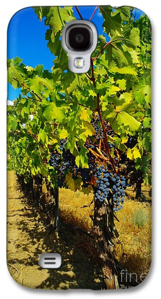 Yakima Valley Galaxy S4 Cases - Heavy On The Vine At The High Tower Winery  Galaxy S4 Case by Jeff  Swan