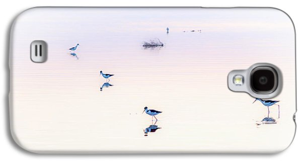 Great Birds Galaxy S4 Cases - Heiwa I Galaxy S4 Case by Peter Tellone