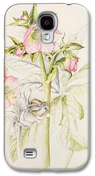 Tasteful Art Galaxy S4 Cases - Hellebores Galaxy S4 Case by Alison Cooper