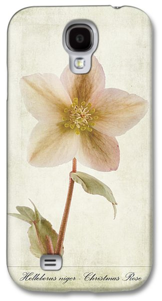 Weed Digital Galaxy S4 Cases - Helleborus niger Galaxy S4 Case by John Edwards