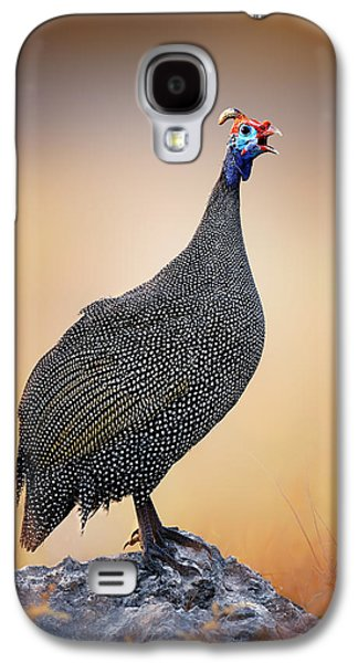 Open Photographs Galaxy S4 Cases - Helmeted Guinea-fowl perched on a rock Galaxy S4 Case by Johan Swanepoel