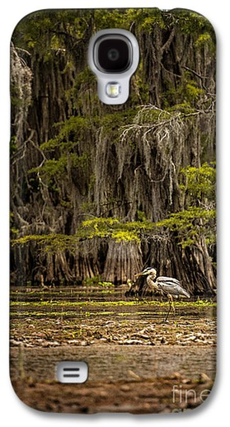 Tamyra Ayles Galaxy S4 Cases - Heron on Caddo Lake II Galaxy S4 Case by Tamyra Ayles