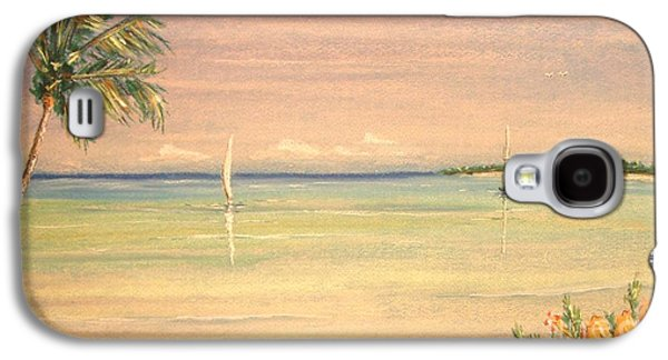 Beach Landscape Pastels Galaxy S4 Cases - Hibiscus Cove Galaxy S4 Case by The Beach  Dreamer