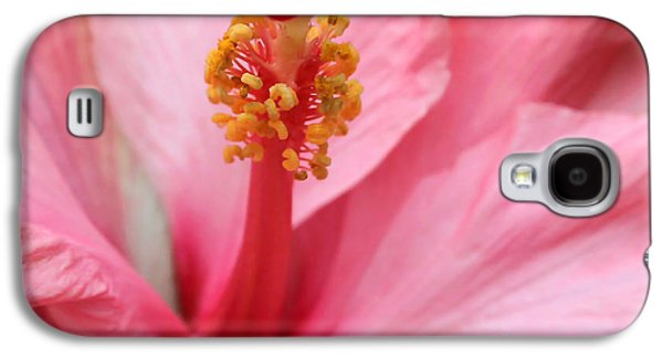 Florida Flowers Photographs Galaxy S4 Cases - Hibiscus Flower Close Up Galaxy S4 Case by Sabrina L Ryan