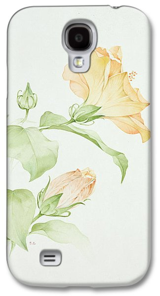 Botanical Galaxy S4 Cases - Hibiscus Rosa-sinensis Galaxy S4 Case by Sarah Creswell