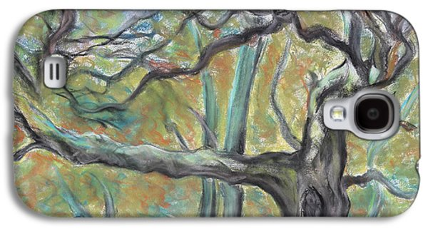 Landscape Acrylic Prints Drawings Galaxy S4 Cases - Hidden Oak and Canyon in Briones Park Galaxy S4 Case by Asha Carolyn Young