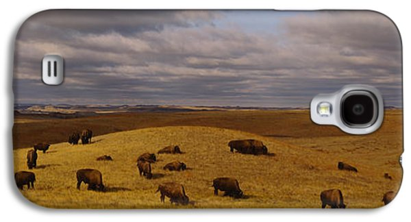 American Bison Galaxy S4 Cases - High Angle View Of Buffaloes Grazing Galaxy S4 Case by Panoramic Images
