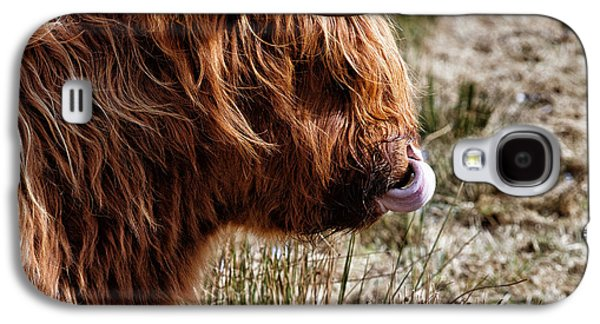 Snowy Day Galaxy S4 Cases - Highland Coo with tongue in nose Galaxy S4 Case by John Farnan