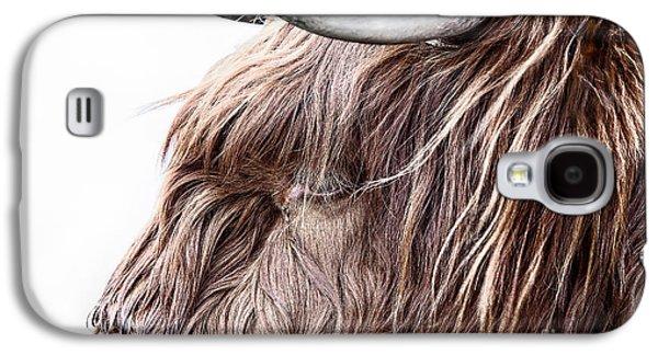 Snowy Day Galaxy S4 Cases - Highland Cow Color Galaxy S4 Case by John Farnan