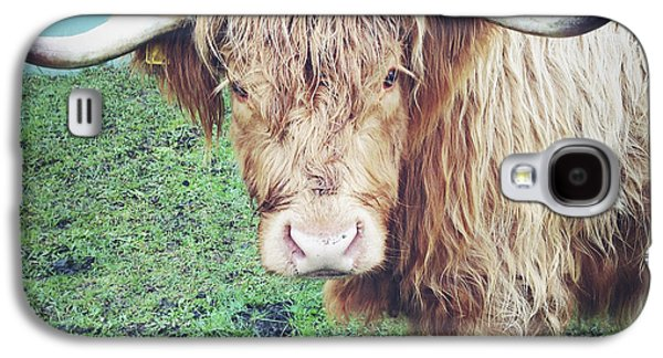 Steer Galaxy S4 Cases - Highland cow Galaxy S4 Case by Les Cunliffe