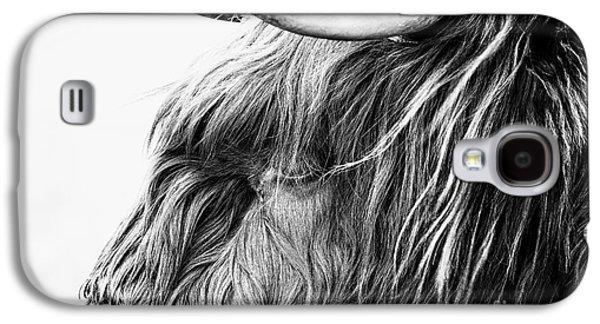 Snowy Day Galaxy S4 Cases - Highland Cow Mono Galaxy S4 Case by John Farnan