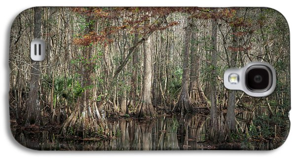 Epiphyte Galaxy S4 Cases - Highland Hammocks State Park Florida    Galaxy S4 Case by Rich Franco
