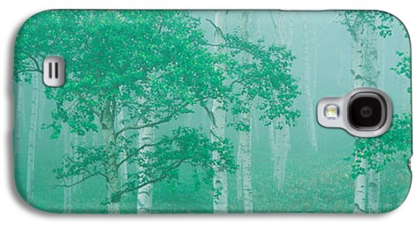 Green Foliage Galaxy S4 Cases - Highlands Yachihokgen Nagano Japan Galaxy S4 Case by Panoramic Images