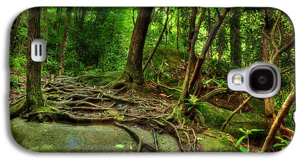 Tree Roots Galaxy S4 Cases - Hiking Along The River Galaxy S4 Case by Michael Eingle