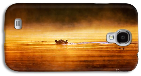 Misty Galaxy S4 Cases - Hippopotamus at sunrise over misty river Galaxy S4 Case by Johan Swanepoel