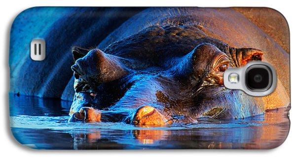 Camera Galaxy S4 Cases - Hippopotamus  at sunset Galaxy S4 Case by Johan Swanepoel