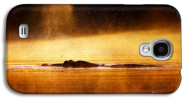 Misty Galaxy S4 Cases - Hippopotamus blowing air at sunrise over misty river Galaxy S4 Case by Johan Swanepoel