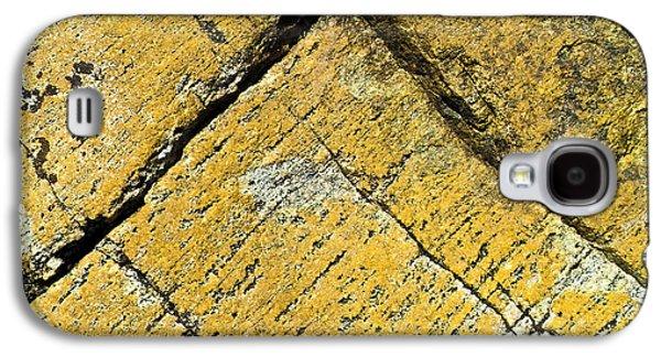 Alga Galaxy S4 Cases - History of Earth 3 Galaxy S4 Case by Heiko Koehrer-Wagner