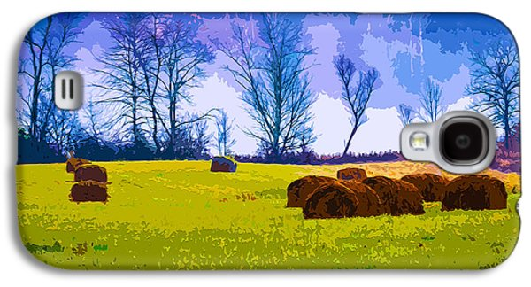 Haybale Mixed Media Galaxy S4 Cases - Hocking Hills 10 Galaxy S4 Case by Brian Stevens