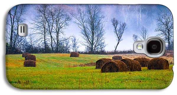Haybale Galaxy S4 Cases - Hocking Hills 9 Galaxy S4 Case by Brian Stevens