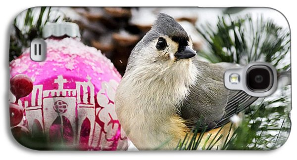 Holiday Bird Titmouse Square Galaxy S4 Case by Christina Rollo