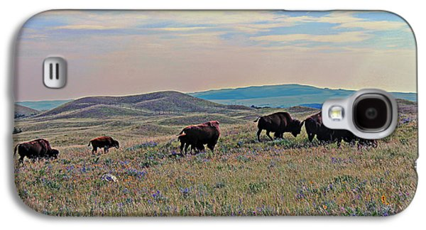 Bison Digital Art Galaxy S4 Cases - Home On the Range Galaxy S4 Case by Vickie Emms