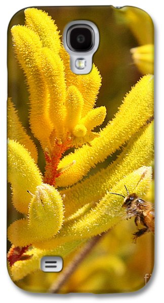 Kangaroo Digital Galaxy S4 Cases - Honey Bee Hovers with Kangaroo Paw Flower Galaxy S4 Case by Kenny Bosak