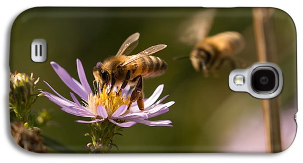 Fauna Photographs Galaxy S4 Cases - Honey Bees Galaxy S4 Case by Robert Carr