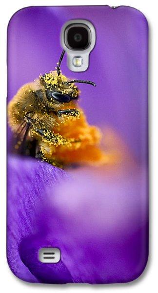 Pollinate Galaxy S4 Cases - Honeybee Pollinating Crocus Flower Galaxy S4 Case by Adam Romanowicz