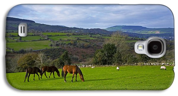 Farmscape Galaxy S4 Cases - Horses And Sheep In The Barrow Valley Galaxy S4 Case by Panoramic Images