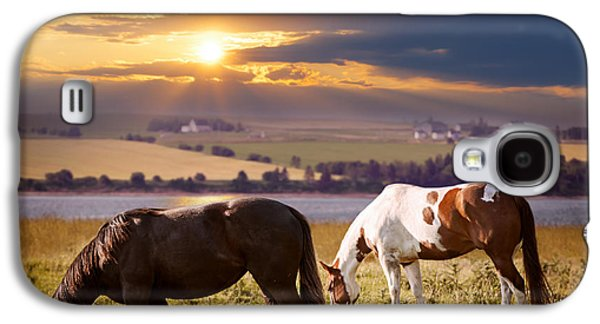 Sun Galaxy S4 Cases - Horses grazing at sunset Galaxy S4 Case by Elena Elisseeva